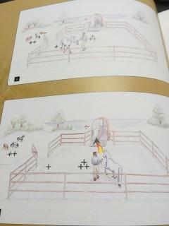 Horsemanship Hempfling